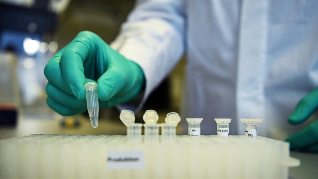 Realizan con éxito pruebas preclínicas de una vacuna contra el coronavirus en Alemania