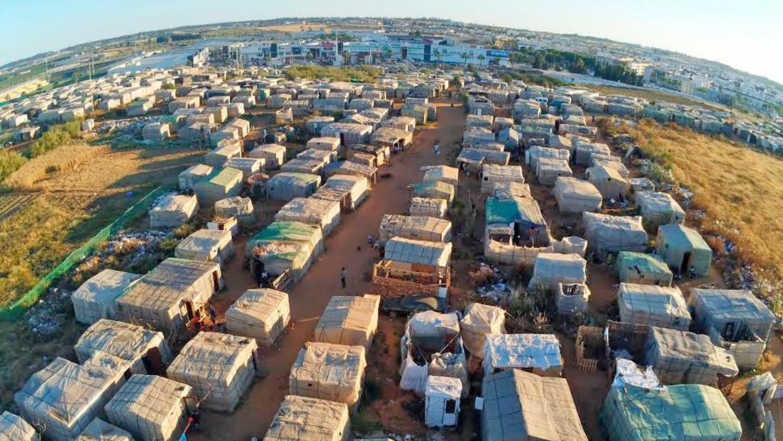 La cara amarga del cultivo de fresas en España: condiciones inhumanas para migrantes sin papeles y sin hogar
