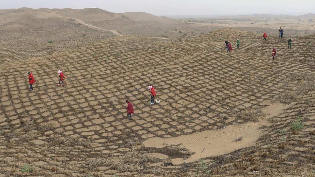 VIDEO: Un desierto en China se ha convertido en un oasis en 60 años