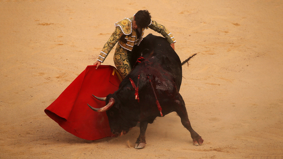 """""""Están tardando en abolir esa infamia"""": Estalla la polémica en España por la exclusión de la tauromaquia de las ayudas del Gobierno al sector cultural"""