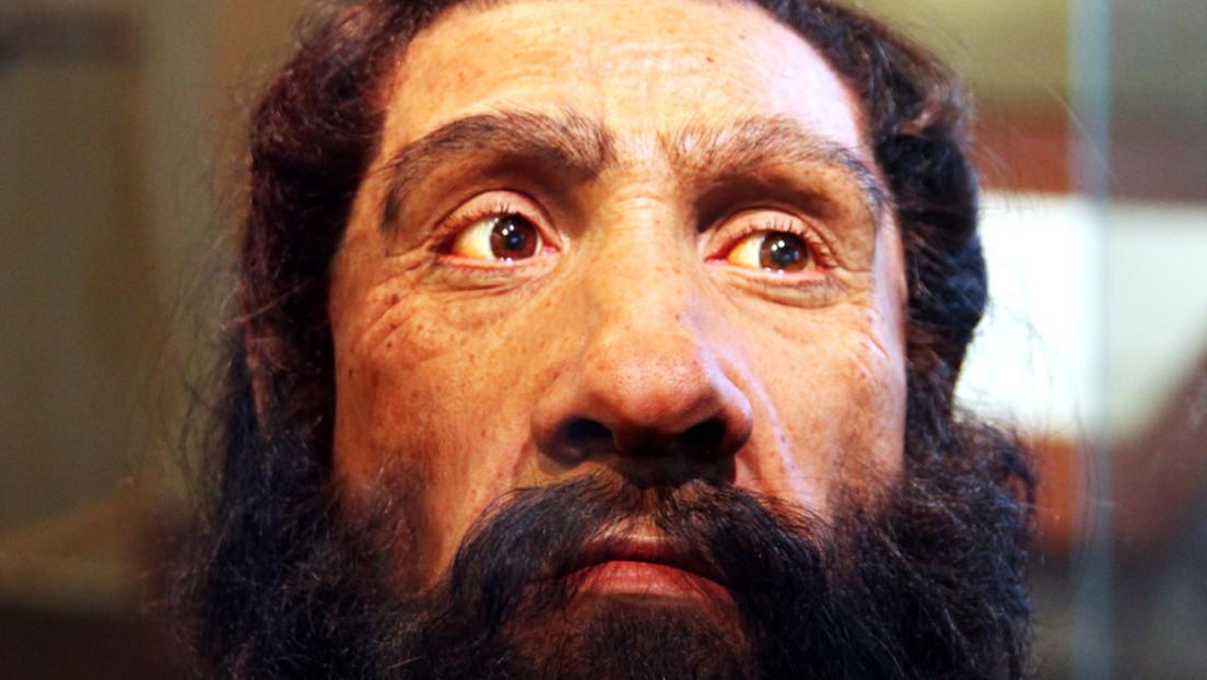 Una simulación en una supercomputadora revela la causa principal de la extinción de los neandertales