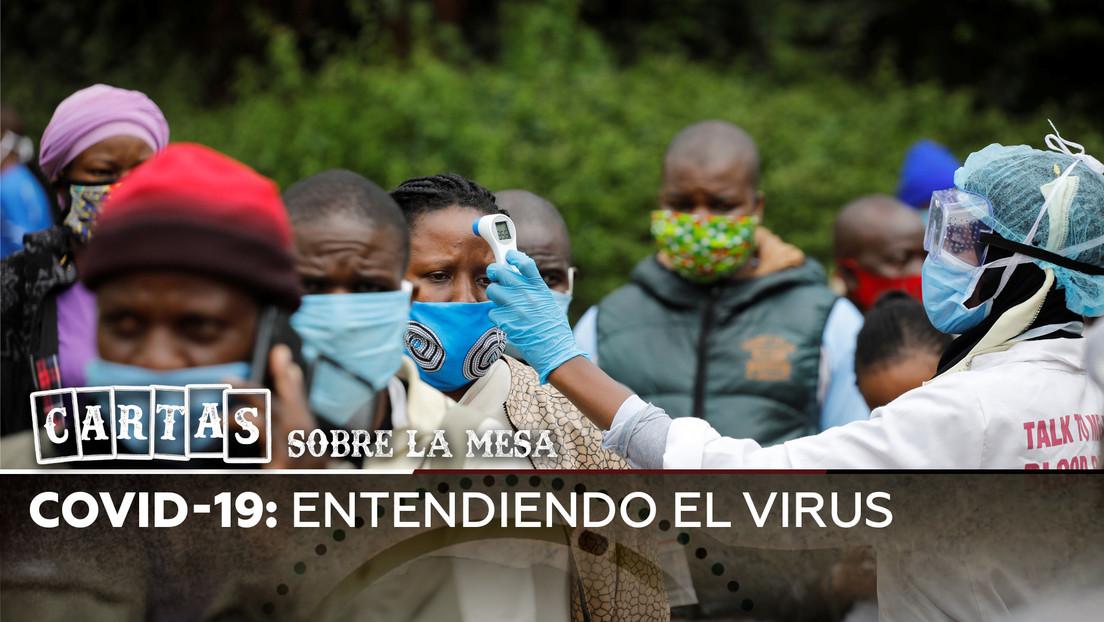 Entendiendo el coronavirus: ¿qué es? ¿es tan letal? ¿qué factores influyen?