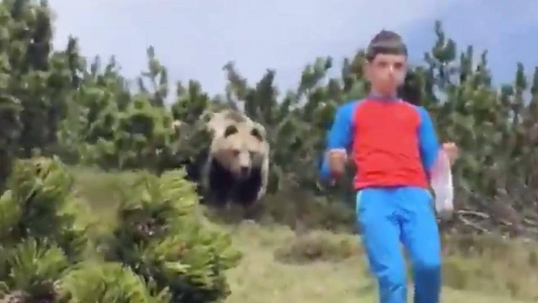 VIDEO: Un niño muestra qué hacer cuando un oso lo persigue en un valle de Italia