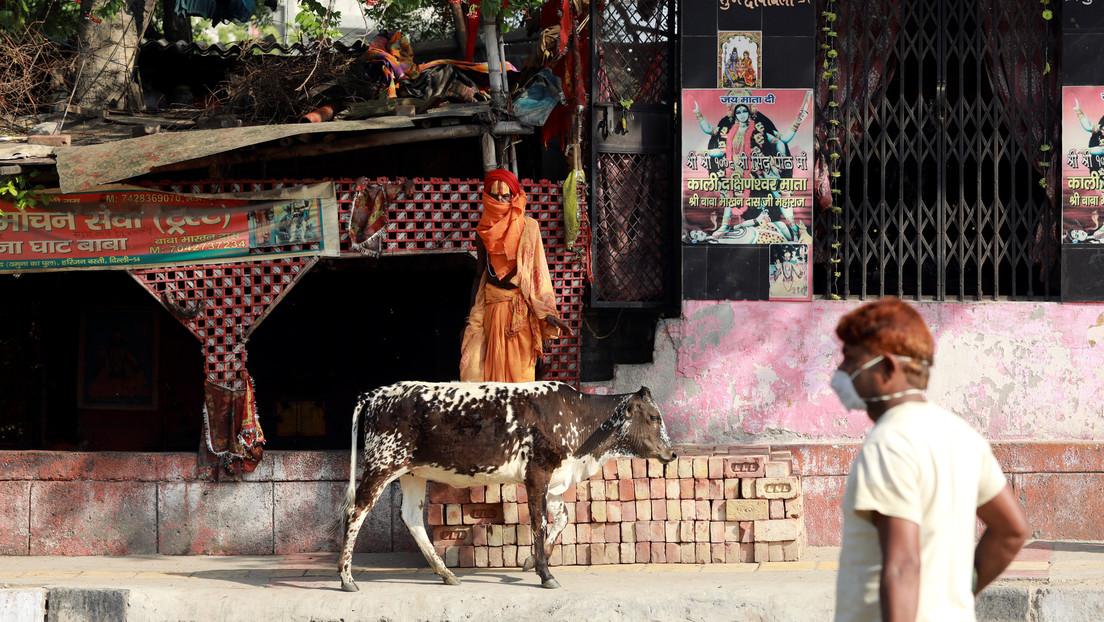 Sacerdote indio decapita a un hombre en un templo para combatir el coronavirus