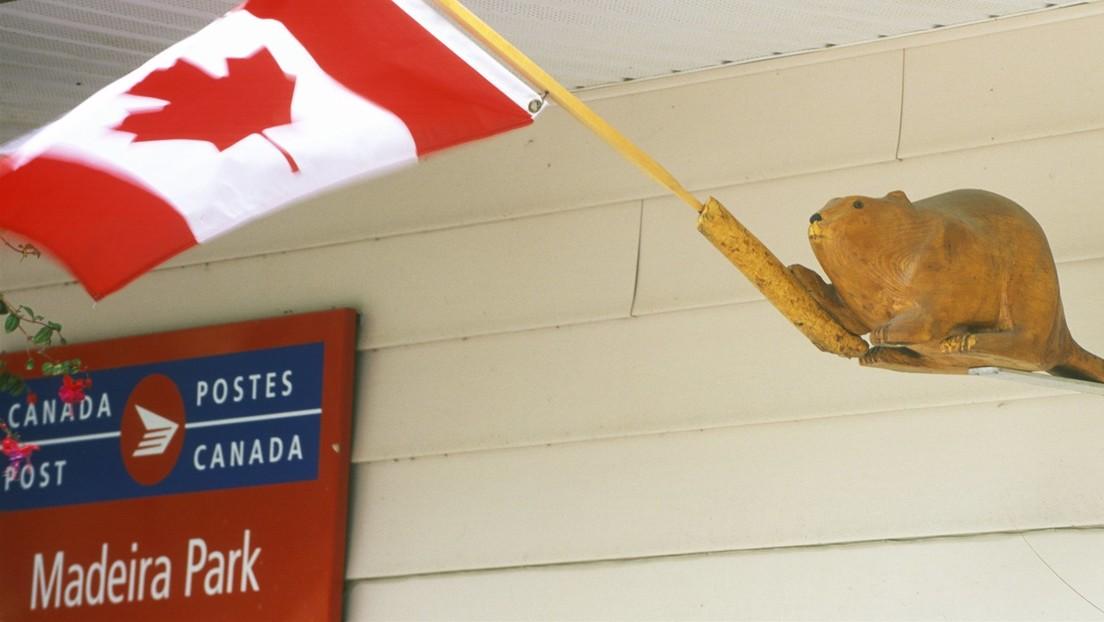Un canadiense recibe un envío postal con 8 años de retraso