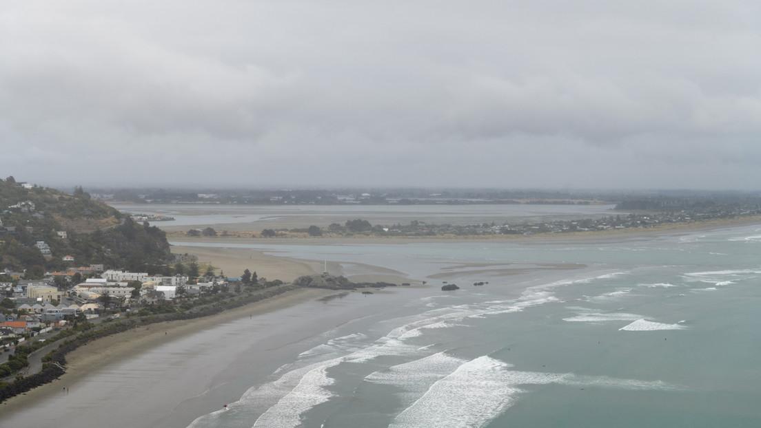 Playas de Nueva Zelanda se tiñen de rojo por la muerte masiva de langostillas