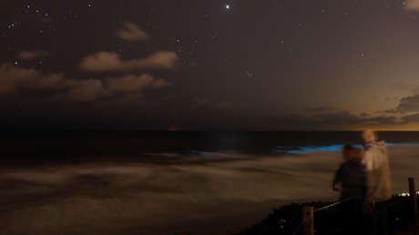 De espectáculo colorido a marea apestosa: así evolucionó el fenómeno que cubrió las costas de California