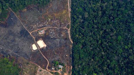 Un estudio advierte que la deforestación de la Amazonía en abril fue la mayor en 10 años