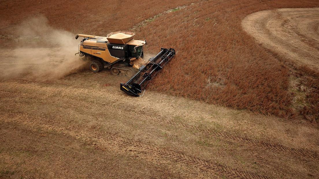 Reportan que China instruye a sus empresas estatales para que dejen de comprar productos agrícolas a EE.UU.