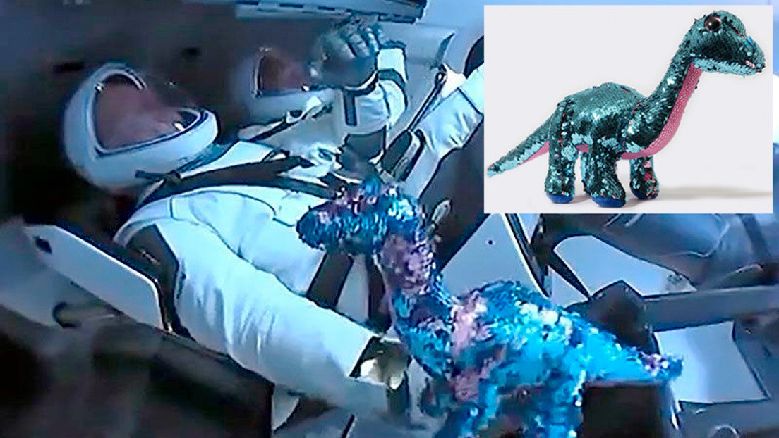 El tercer 'pasajero' de la nave de SpaceX: ¿por qué los astronautas llevaron un dinosaurio de juguete a la EEI?