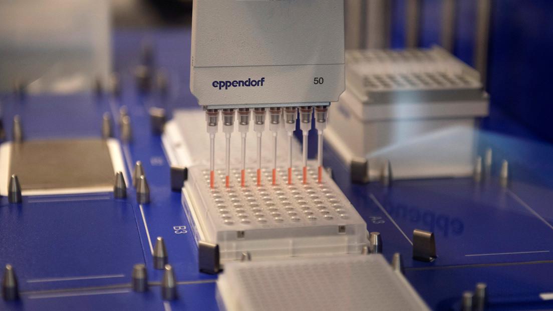 Reino Unido suspende el tratamiento experimental con hidroxicloroquina tras no encontrar evidencia de sus beneficios contra el covid-19