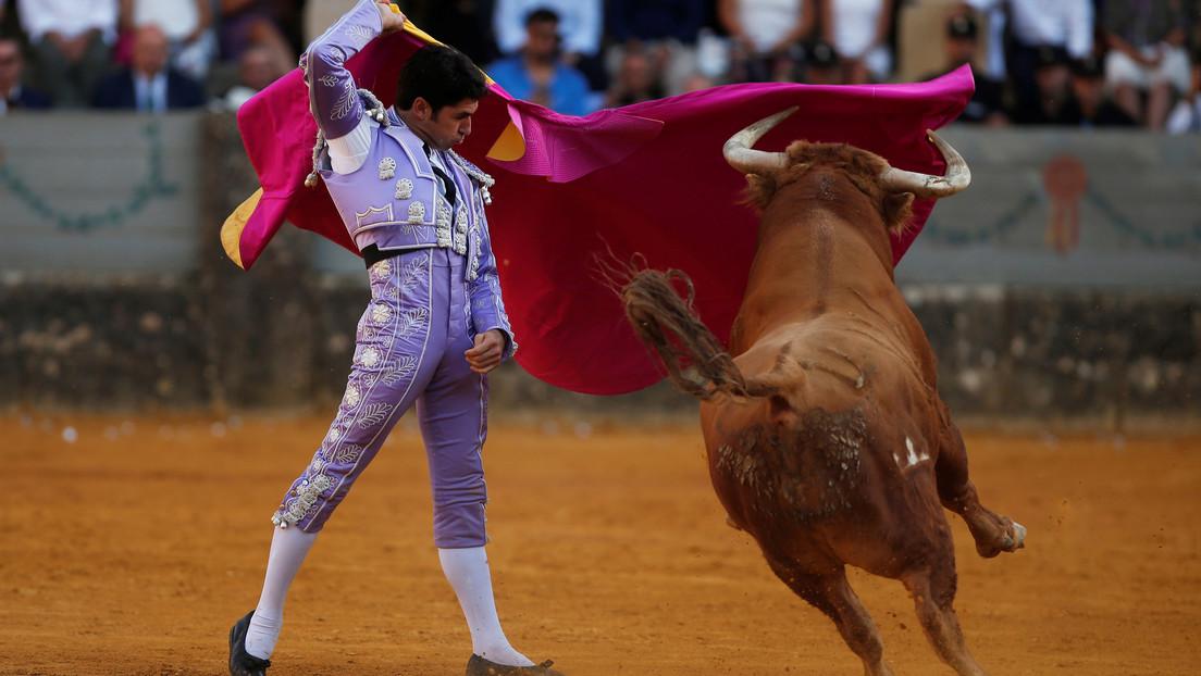 Consejo de Bogotá aprueba un proyecto que desincentiva las corridas de toros en la capital colombiana