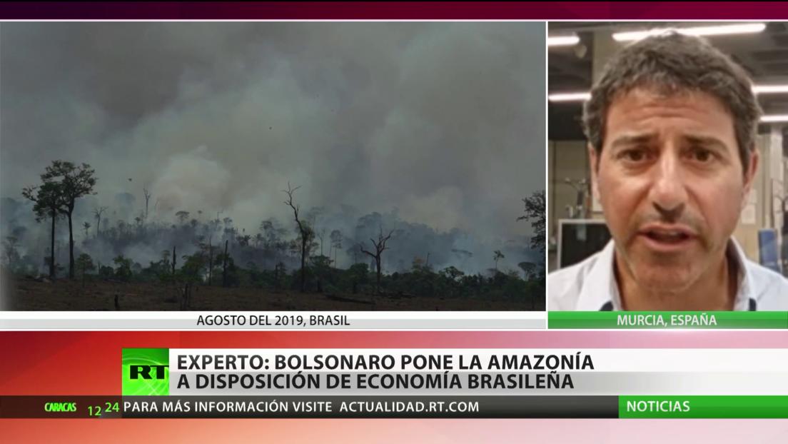 Deforestación: ¿Un desastre natural o una cuestión de privilegios?