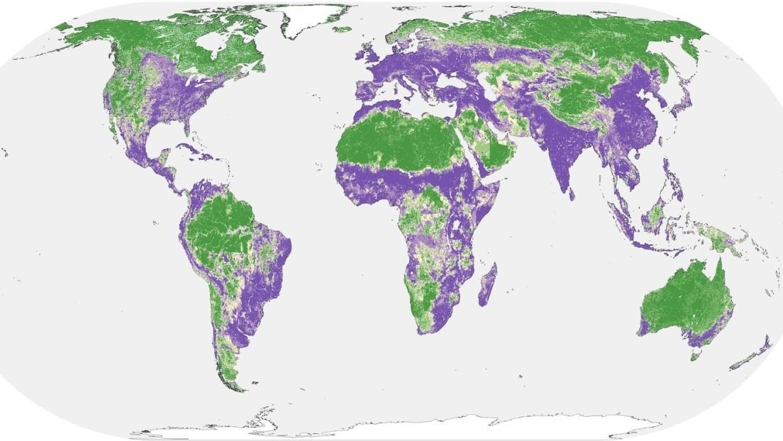 La mitad de la Tierra casi no está afectada por la acción del ser humano