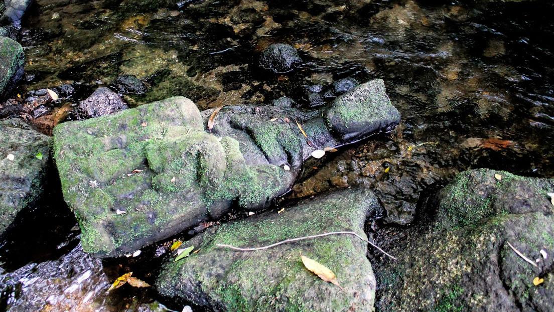 FOTOS: Un pescador encuentra por casualidad una escultura gótica de la Virgen María en un río del norte de España