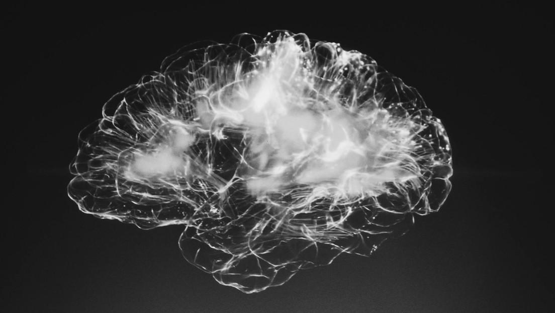 """Crean un indicador del funcionamiento de las neuronas que tiene un """"brillo récord"""""""