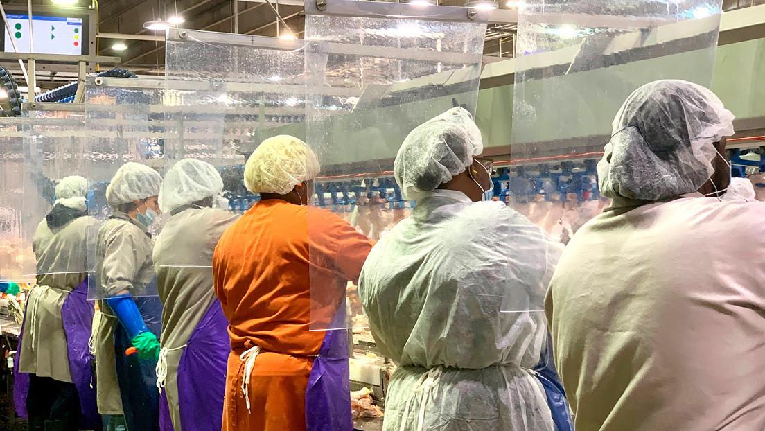 China suspende las importaciones de carne aviar de una procesadora de EE.UU. que tuvo un foco de coronavirus