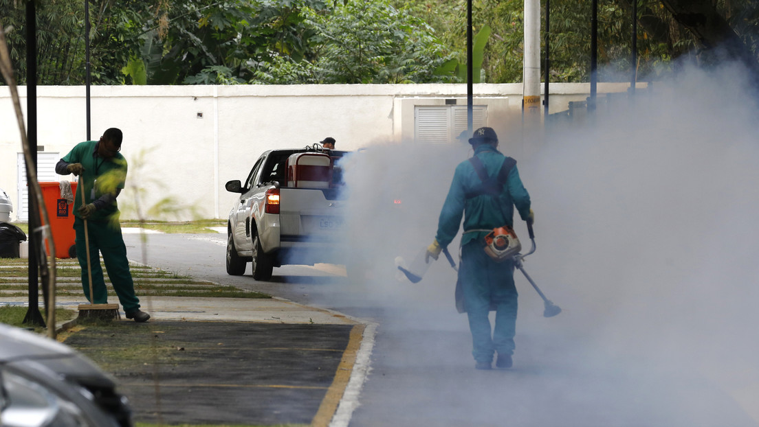 """""""Riesgo potencial de una nueva epidemia"""": Científicos identifican una nueva cepa de zika que circula en Brasil"""