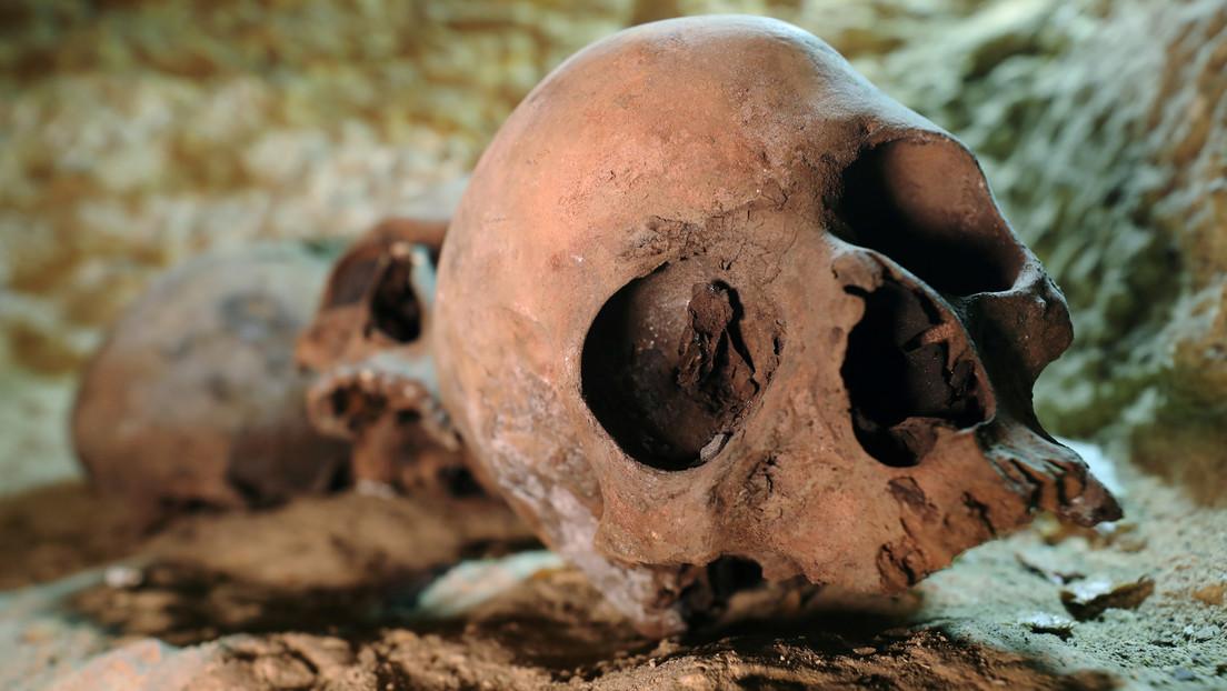 FOTOS: Recrean el aspecto de un hombre de la Edad de Piedra, cuyo cráneo fue hallado en una tumba submarina