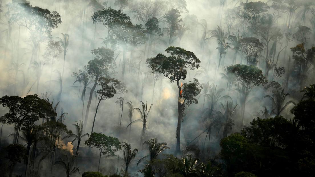La Amazonía brasileña registra en junio el mayor número de incendios desde 2007