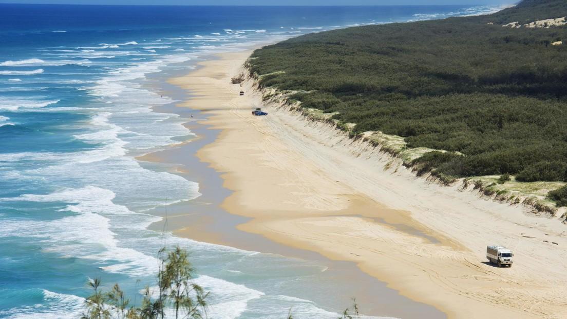 Un hombre muere tras ser atacado por un tiburón mientras pescaba en las costas de Australia