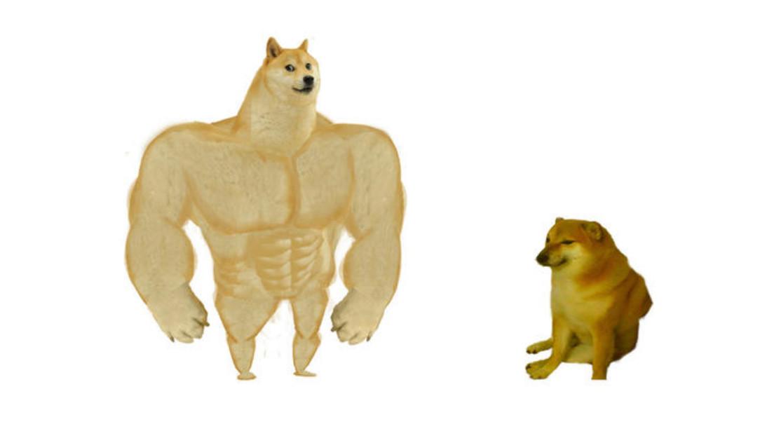 Cómo se originó el meme del perro grande y uno pequeño, que invadió las redes durante el autoaislamiento