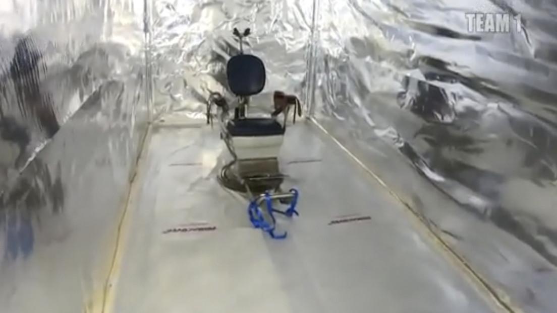 Mensajes secretos permiten a la Policía neerlandesa localizar una cámara de tortura y contenedores que iban a usarse como celdas (VIDEO)