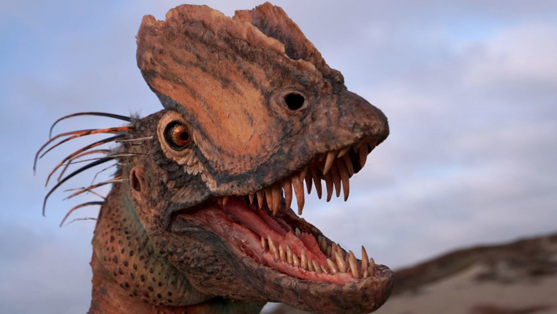 Un estudio demuestra que el dinosaurio que escupía veneno en 'Parque Jurásico' era completamente distinto