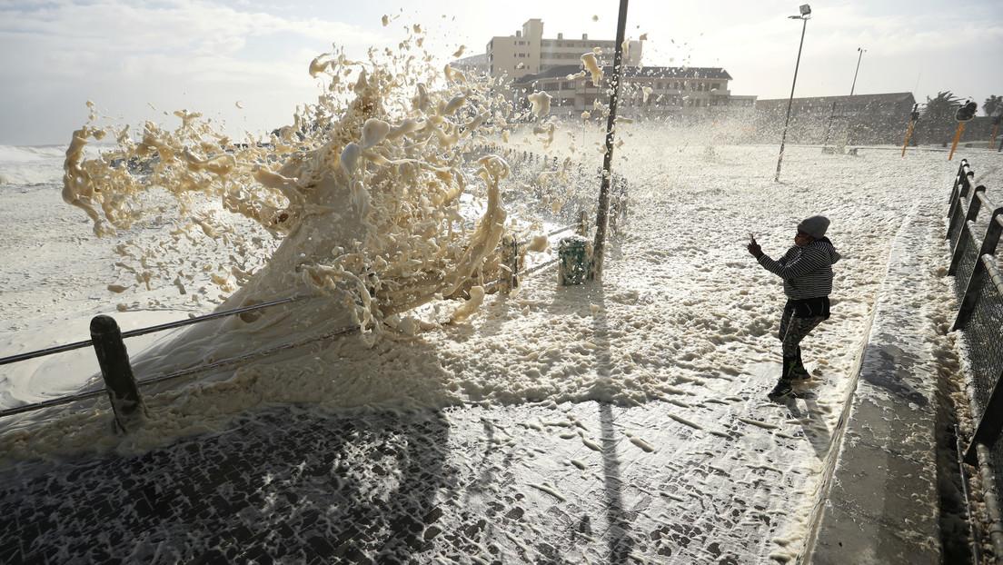 VIDEO: Grandes copos de espuma marina inundan las calles de Ciudad del Cabo