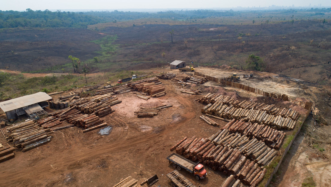 Exministros brasileños piden que la recuperación económica tras la pandemia vaya en línea con la política ambiental