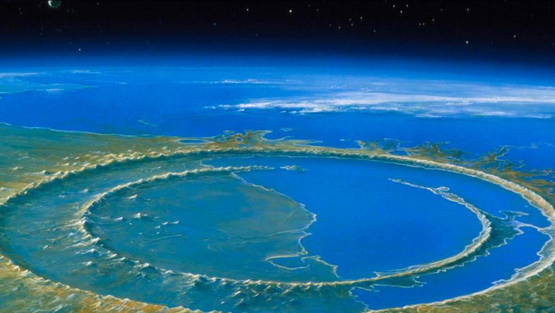 La vida se recuperó rápidamente tras la caída del asteroide que extinguió a los dinosaurios