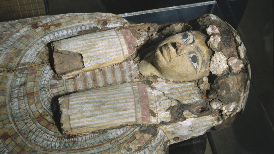 """Descubren que una momia egipcia de más de 2.500 años """"parecida a un niño"""" no era humana (FOTOS)"""