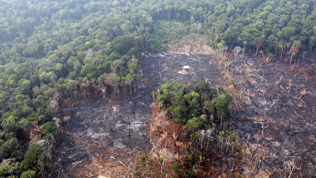 """""""El ecocidio, etnocidio y terricidio avanzan peor que el virus"""": Las conclusiones de la primera Asamblea Mundial de la Amazonia"""