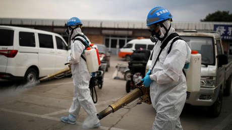 Casos de peste bubónica en Mongolia y China: ¿Hay que preocuparse o no?