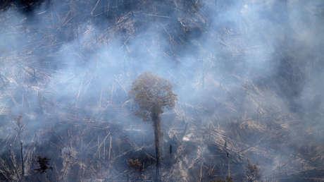 Incendios en el Pantanal brasileño crecen un 200 % en comparación con el año pasado