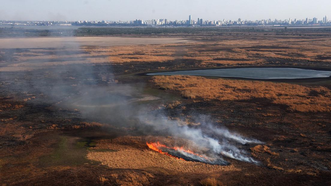 Detienen en Argentina a dos hombres acusados de provocar los incendios de humedales en el río Paraná - RT