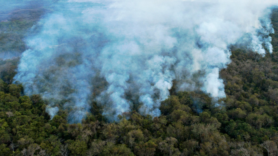 El Pantanal, santuario de biodiversidad, sufre los incendios más graves de los últimos 20 años