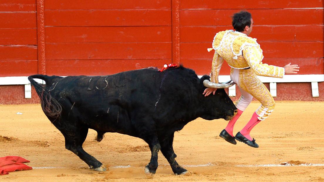 El torero español Enrique Ponce sufre una nueva cornada en los muslos cuando se disponía a matar al toro