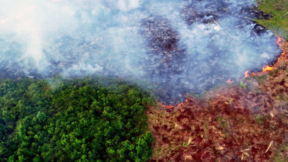 Las cuentas del Ejército brasileño para controlar los incendios pasan por auditoría mientras que el número de fuegos en la Amazonía bate un récord