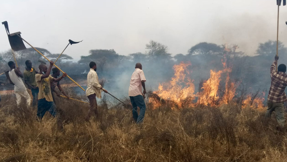 FOTOS, VIDEO: Un infernal incendio devora una extensa área de la mayor reserva de Kenia
