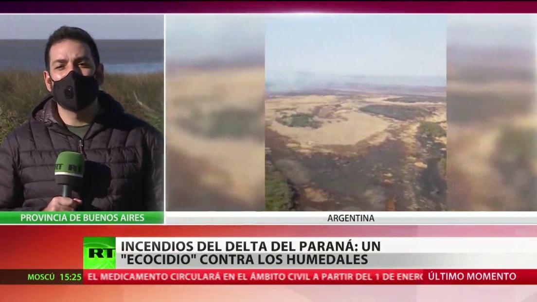 Incendios en el delta del Paraná: los expertos dan la voz de alarma ante la tragedia ambiental en Argentina