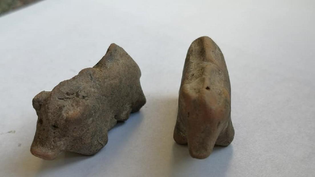 Encuentran dos figurillas de arcilla con forma de cerdo de más de 3.500 años de antigüedad en Polonia