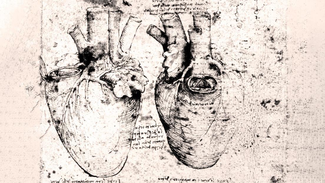 Científicos descubren que un dibujo de Da Vinci es crucial para comprender cómo funciona el corazón