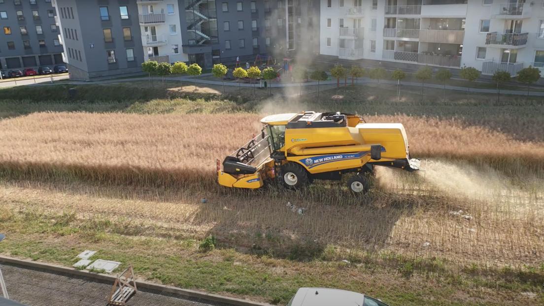VIDEO: Granjeros polacos siguen labrando tierras en medio de modernos edificios dentro de Lublin