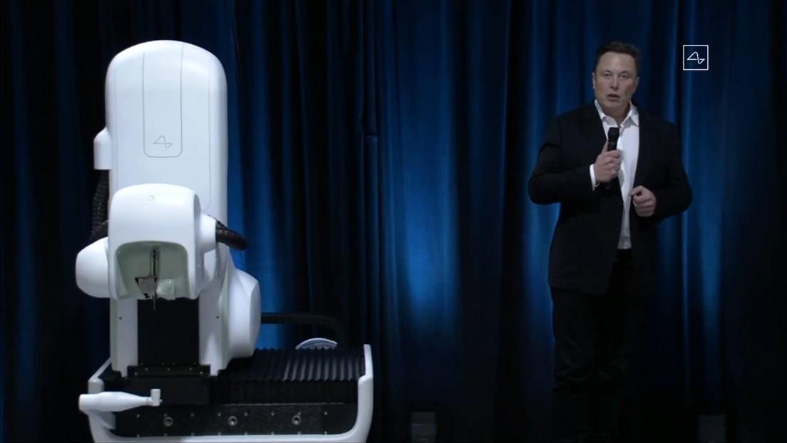 Elon Musk presenta en funcionamiento el prototipo de Link, dispositivo pensado para conectar el cerebro humano a un computador