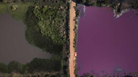 La mitad de una popular laguna paraguaya se tiñe de rojo por la contaminación y mueren miles de peces y aves (FOTOS)