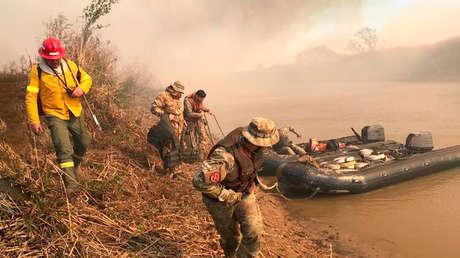 Por qué se quema el delta del Paraná en Argentina y cuáles son sus terribles consecuencias