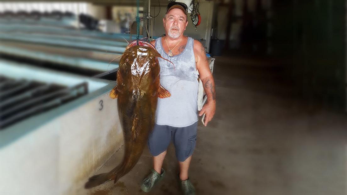 FOTO: Bate un récord al pescar un bagre de 31,7 kilogramos en un río de Florida