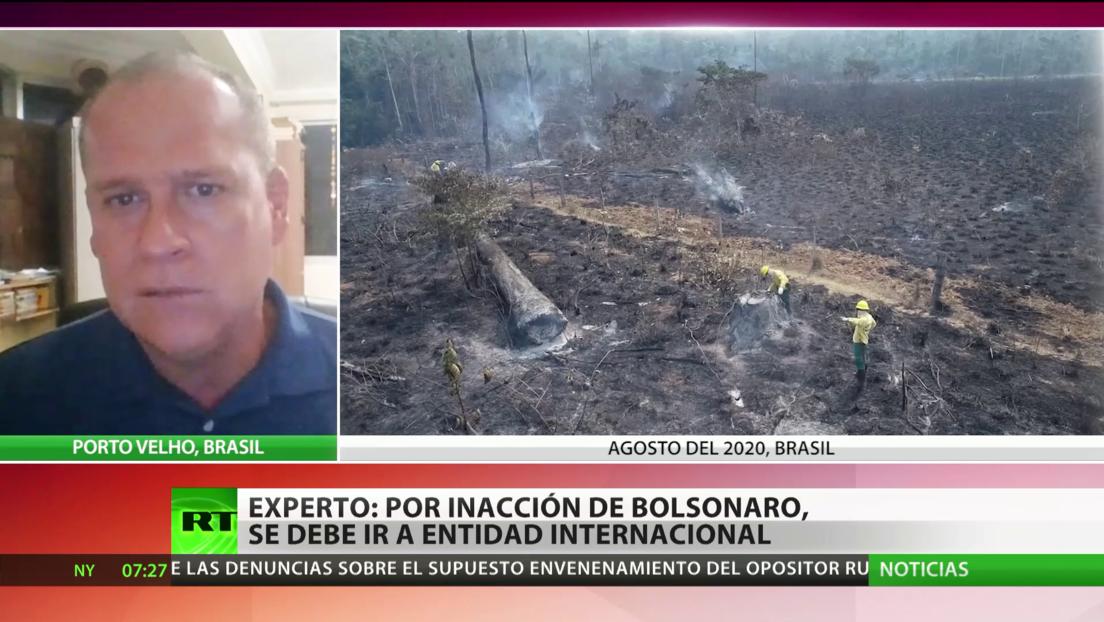 Experto: Ante la inacción del Gobierno de Bolsonaro contra la deforestación se debe recurrir a entidades internacionales
