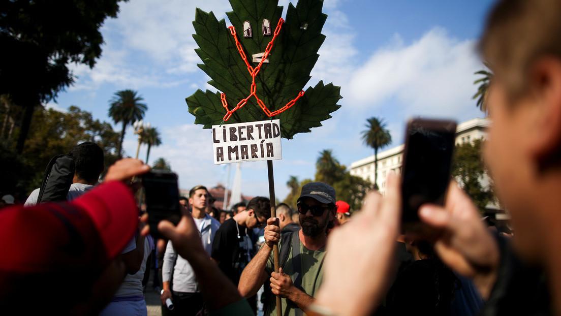Una historia de la prohibición de drogas o cómo Argentina es otro ejemplo de la fallida guerra contra el narco